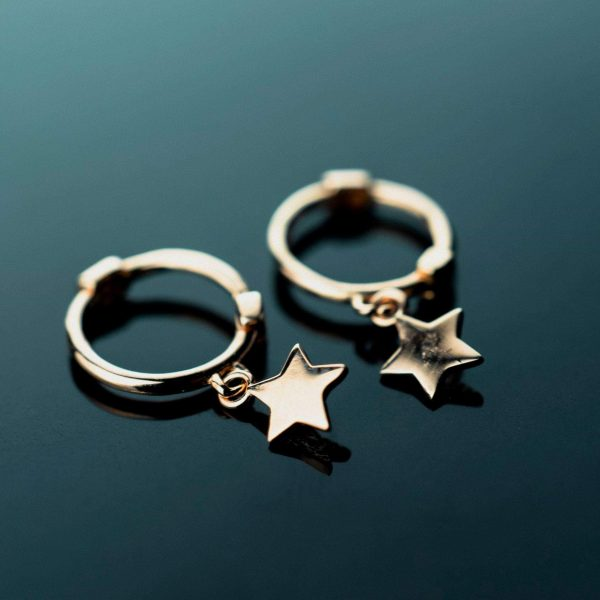 sidabriniai auskarai gold star